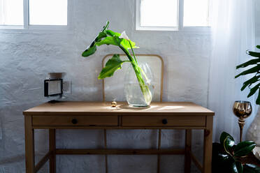 Plant in glass vase by golden ball on wooden desk in bedroom at home - ERRF03867