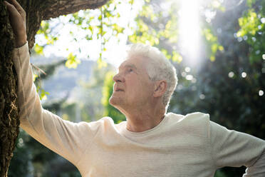 Senior man standing in nature, leaning on tree - AFVF06403