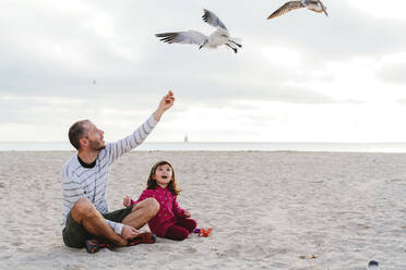 Father feeding seagulls while sitting with daughter at Miami beach, Florida, USA - GEMF03793