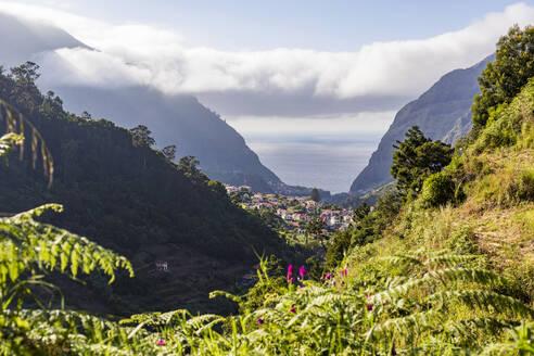 Portugal, Insel Madeira, Nordküste, Sao Vicente, Blick auf die Stadt, Häuser, Nebel - WDF06081