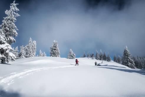 Senior man during ski tour, Inzell, Kienberg, Germany - HAMF00647