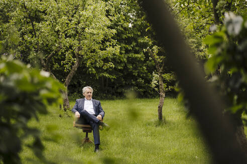 Senior businessman sitting on a chair in a rural garden - GUSF04144
