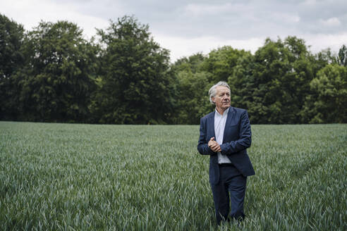 Senior businessman on a field in the countryside - GUSF04156
