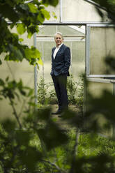 Senior businessman standing in a greenhouse - GUSF04162