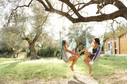 Young women holding hands while sitting in hammocks at yard - LVVF00140