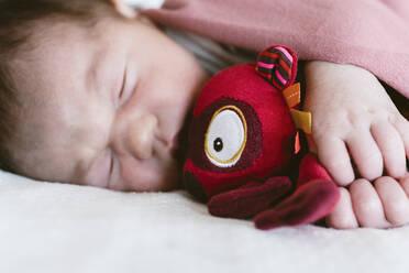 Newborn baby girl sleeping at hospital. Barcelona, Spain - GEMF03912