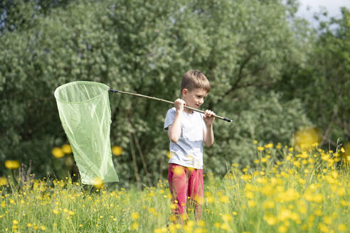 Cute boy catching butterflies with net while standing amidst plants in forest - VPIF02538