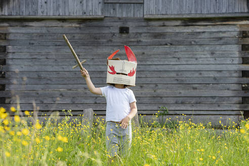 Boy wearing mask holding toy sword while standing amidst plants against cottage - VPIF02571