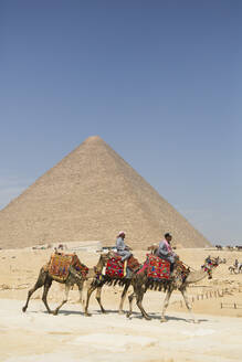 Local men riding camels, Khufu Pyramid in the background, Great Pyramids of Giza, UNESCO World Heritage Site, Giza, Egypt, North Africa, Africa - RHPLF15634