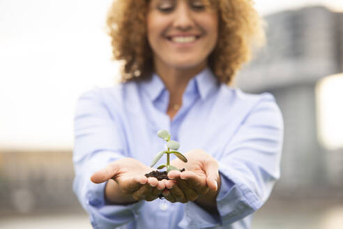 Close-up of female entrepreneur with curly hair holding small plant - MJFKF00499