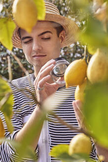 Close-up of young man looking lemon through magnifying glass - UKOF00010