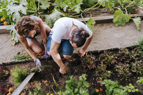 Couple planting while crouching in vegetable garden - EBBF00419