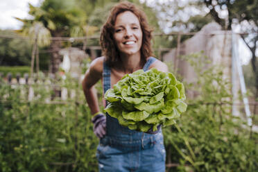 Smiling mid adult woman holding lettuce while standing in vegetable garden - EBBF00428