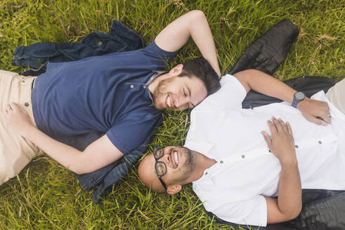 Cheerful gay couple relaxing on grassy land in park - DSIF00028