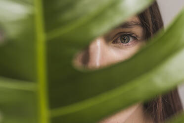 Close-up of woman with gray eye looking through plant - DSIF00049