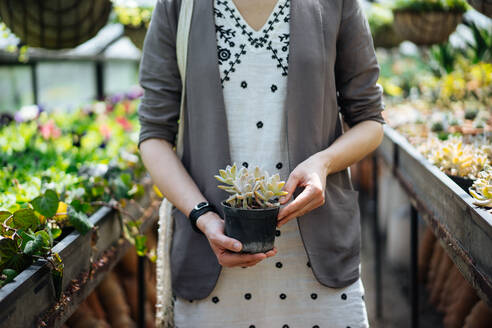 Crop female in summer dress and jacket holding in hands small black pot with high beautiful pale green juicy plant on backlit blurred background - ADSF01951