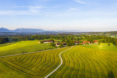 Germany, Bavaria, Upper Bavaria,TolzerLand, near Eurasburg, Hofstatt, Plowed field and road, aerial view - SIEF09952