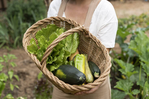 Close-up of young woman holding wicker basket with vegetables in yard - AFVF06832