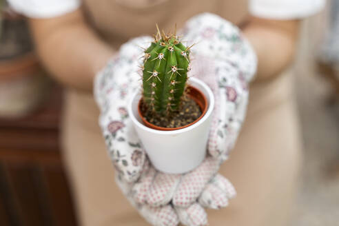 Close-up of young woman holding cactus plant in yard - AFVF06841