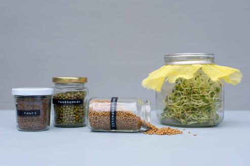 Jars with various seeds, beans and sprouts - GISF00628