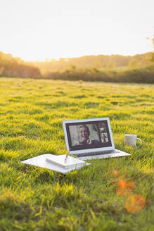 Colleagues video chatting on laptop screen in sunny grass - CAIF28950
