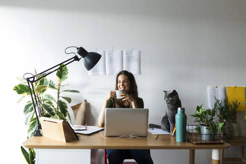 Smiling businesswoman with cat on desk having drink in home office - VABF03210