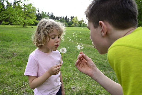 Close-up of siblings blowing dandelion seeds in forest - ECPF01001