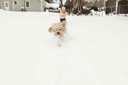Young girl chasing pet dog through snow in backyard - CAVF87698