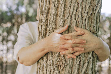 Hands of senior woman embracing tree trunk in yard - ERRF04126