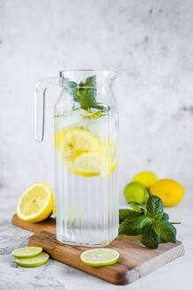 Detox water with lemon, lime and mint and ice cubes - GIOF08702