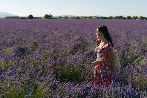 Portrait of beautiful woman standing in vast lavender field with basket in hand - GEMF03977
