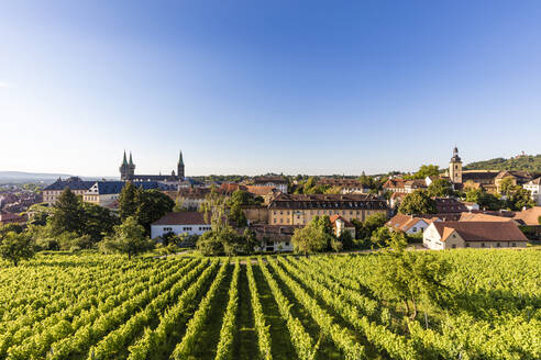 Deutschland, Bayern, Franken, Bamberg, Domberg, Bamberger Dom, Kaiserdom, Neue Residenz, Alte Hofhaltung, Weinberge - WDF06160