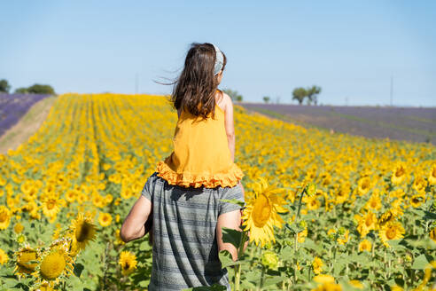 Father carrying daughter on shoulders in sunflower field during summer - GEMF04078