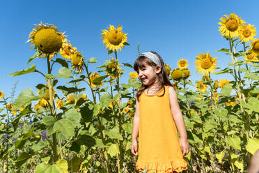 Cute smiling girl standing in sunflower field during sunny day - GEMF04081