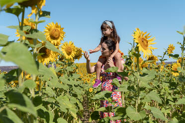 Single mother carrying daughter on shoulders in sunflower field - GEMF04090