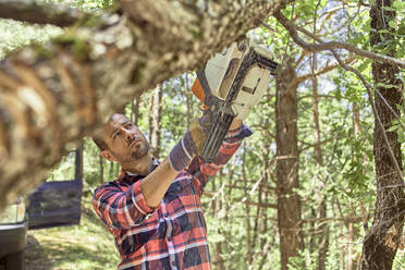 Lumberjack using chainsaw for cutting tree in forest - VEGF02776