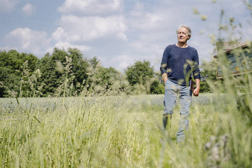 Wrinkled man with laptop walking over grass in agricultural field - GUSF04405