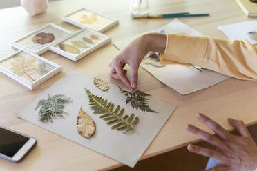 Hands of young woman arranging dry leaves on cardboard at table - AFVF07023
