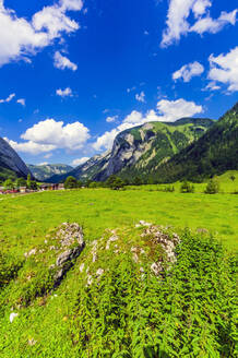 Austria, Tyrol, Vomp, Scenic view of green Lower Inn Valley in summer with village in background - THAF02809