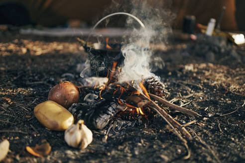 Surface level of cooking food over flames from campfire - SASF00012