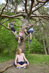 Family enjoying while playing on tree in forest - ECPF01027