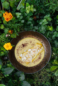 Top view of tasty chicken fillet with mushrooms in cheesy sauce in bowl surrounded with plants and flowers - ADSF14724