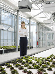 Female owner with arms crossed standing by plants growing in greenhouse - JOSEF01651