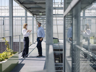 Colleagues wearing masks discussing while standing on footbridge in greenhouse - JOSEF01666