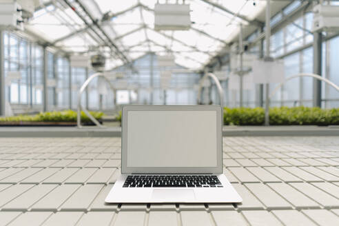 Laptop on floor with plants in background at greenhouse - JOSEF01723
