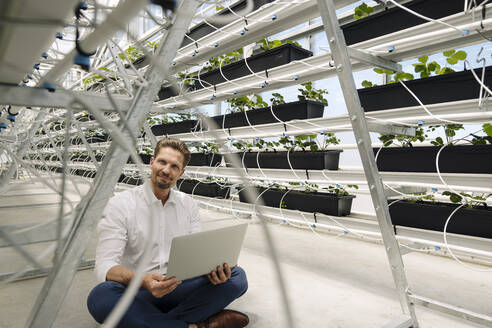 Male entrepreneur using laptop while sitting amidst plants in greenhouse - JOSEF01732
