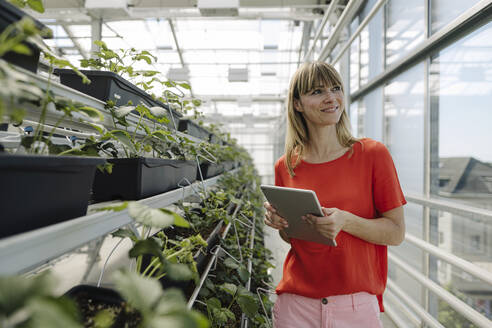 Smiling female entrepreneur with digital tablet looking away while standing by plants in nursery - JOSEF01771