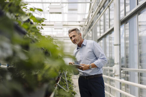 Male professional with digital tablet analyzing plants in greenhouse - JOSEF01798