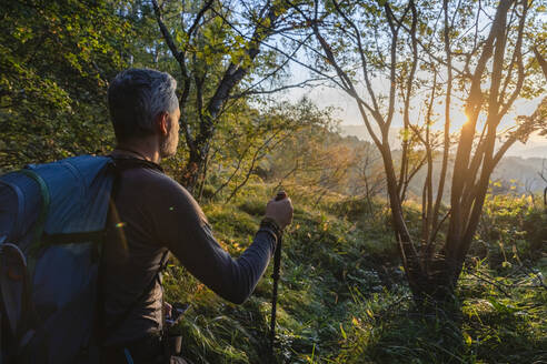 Male hiker with backpack standing in forest at sunrise, Orobie, Lecco, Italy - MCVF00578