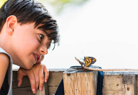 Young boy looking at a monarch butterfly resting on a deck railing. - CAVF89159